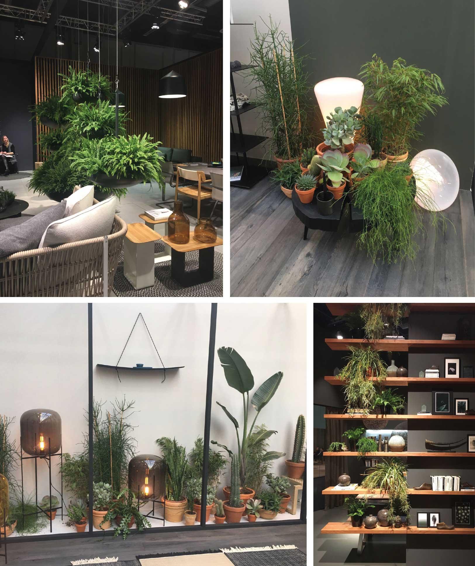 http://slaapkamerdesign.nl/wp-content/uploads/2017/02/beurs-keulen-planten-interieur.jpg
